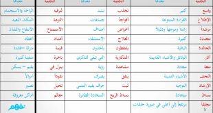 صورة مفردات عربية جميلة , شاهد معاني بعض كلمات عربية