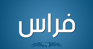 صورة معنى اسم فراس , شرح اسم فراس