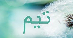 صورة اكتشفي اسم ابنك , اسماء فارسية للذكور