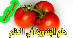 صورة ماتيجو ناكل طماطم في الحلم , اكل الطماطم في المنام
