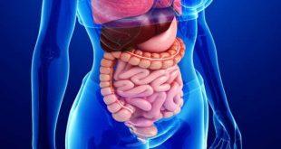 اعراض التهاب المعدة والقولون العصبي