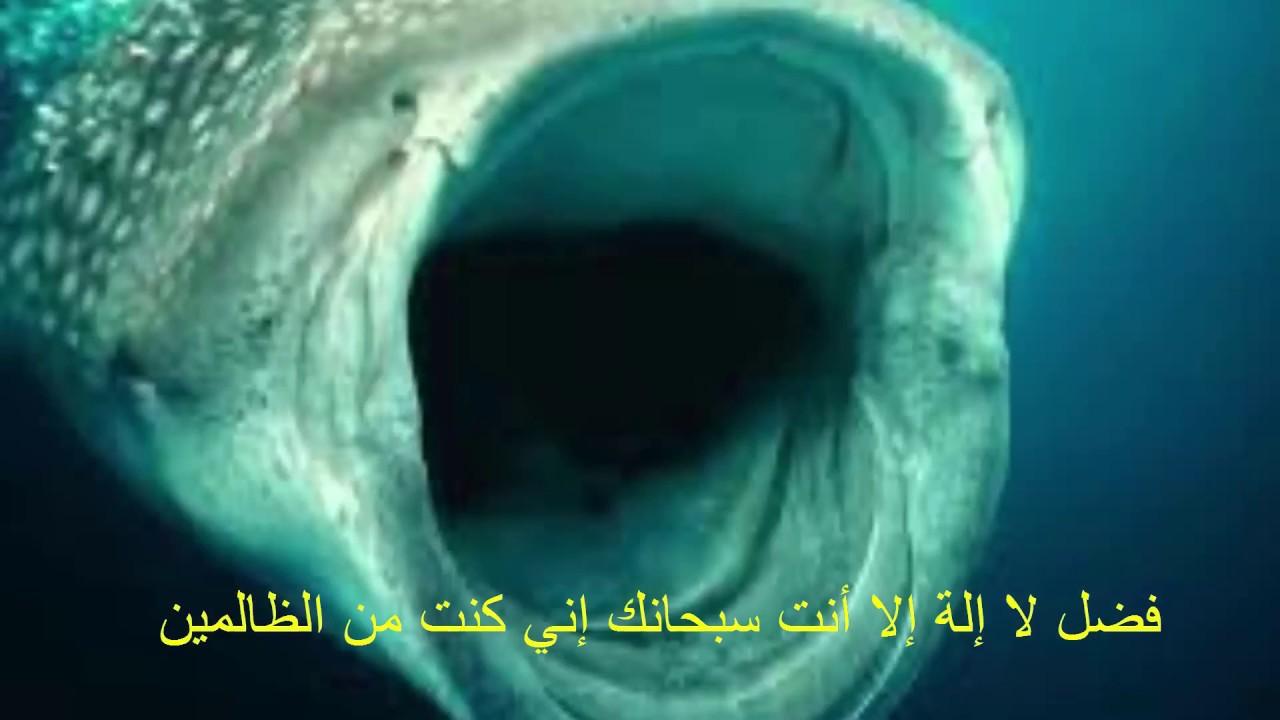 صورة دعاء ذي النون,عايز تعرف وتفهم ادعيه دينيه 2808 7