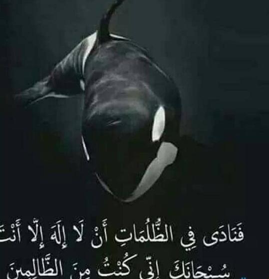 صورة دعاء ذي النون,عايز تعرف وتفهم ادعيه دينيه 2808